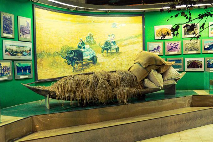 Can Tho City travel guide: Can Tho Museum Life Size Display